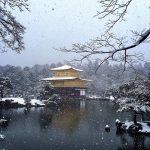 京都。賞雪小建議